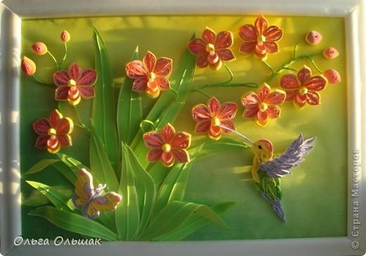 Картина панно рисунок День рождения Квиллинг Орхидеи Бумага Бумага гофрированная Бумажные полосы Бусины Пастель Проволока фото 2