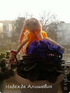 В стране фиалок)) фото 1