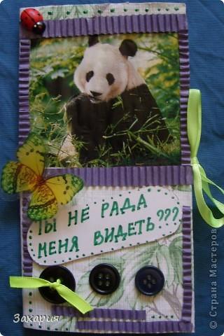 Решила показать, хоть и 8-е уже давно прошло.... Была у меня в запасах панда, кто за моими работами следит, возможно помнит, вот такая она была в начале... https://stranamasterov.ru/node/77150