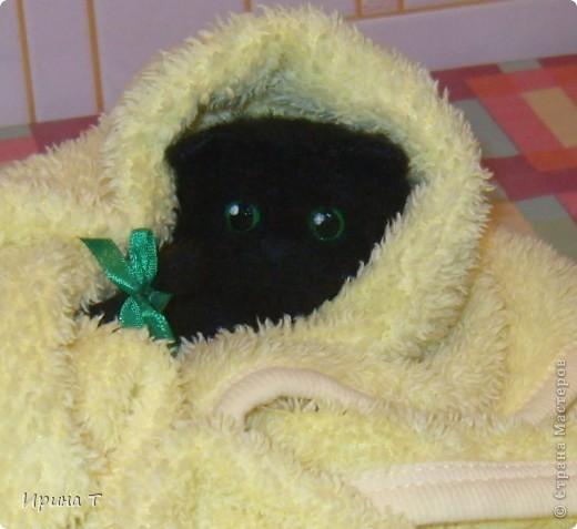Первая попытка сотворить котёнка!!! фото 2