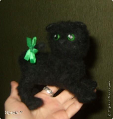 Первая попытка сотворить котёнка!!! фото 3
