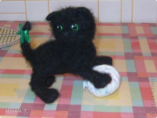 Первая попытка сотворить котёнка!!! фото 5