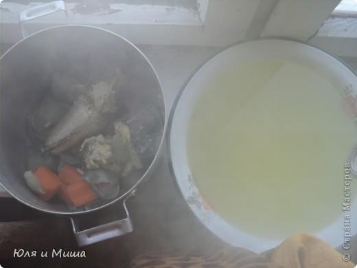 Для начала нам понадобится полкило рыбы хэк (1 шт), 1 большая морковка и 8 луковиц. Все это крупно нарезаем и закладываем в каструлю. фото 6