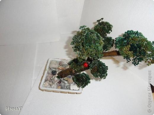 Видела где-то в интернете подобное дерево, по-моему даже здесь,в СМ, но сейчас не нашла .  Может автор удалил, а может я ошибаюсь с сайтом.  Но мне понравилось, и я решила сделать тоже.  фото 4