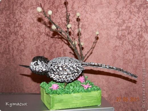 Птица трясогузка для конкурса в детский садик фото 3