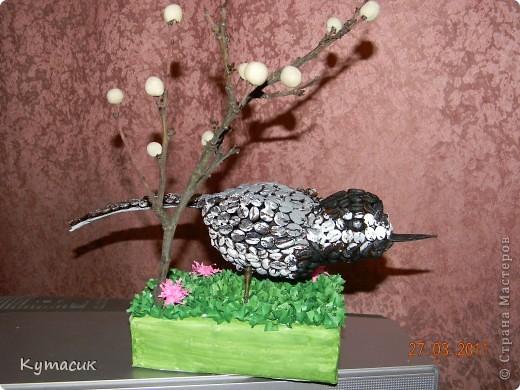 Птица трясогузка для конкурса в детский садик фото 4