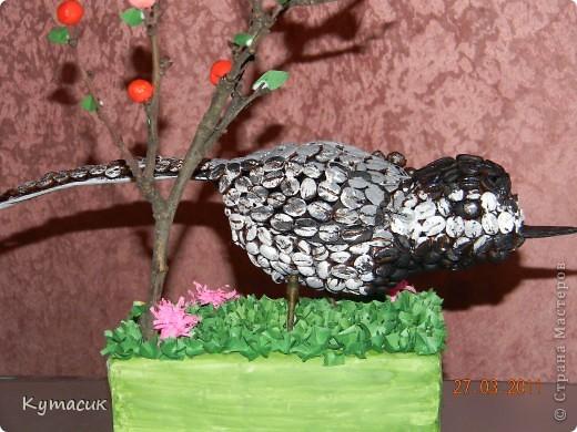 Птица трясогузка для конкурса в детский садик фото 5