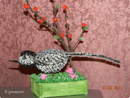 Птица трясогузка для конкурса в детский садик фото 1