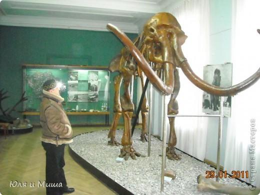 Приглашаем побродить с нами по залам Полтавского краеведческого музея :) фото 4