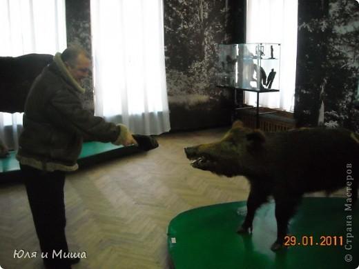 Приглашаем побродить с нами по залам Полтавского краеведческого музея :) фото 5