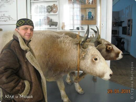 Приглашаем побродить с нами по залам Полтавского краеведческого музея :) фото 16