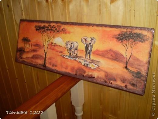 """""""Слоны в пустыне"""" фото 4"""
