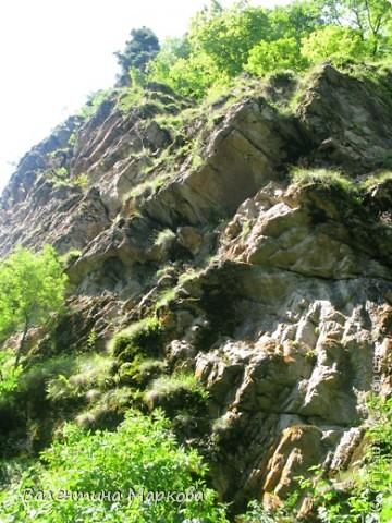 Несколько лет в конце июля-начале августа мне удается провести недельку в горах Карачаево-Черкессии.Прожить несколько дней в палатке под огромной сосной на берегу быстрой горной речки Лабы-это заряд энергии, красоты, позитива на целый год. У меня уже большой архив фотографий. Поделюсь я с Вами только пейзажами.На фотографиях не будет людей, потому что,  в принципе, в тех местах,где мы отдыхаем их нет(за исключением таких же сумасшедших, влюбленных в горы).Добираться к той заветной поляне нам приходится около 4-х часов по горной дороге, а протяженность той дороги всего 70 км. Этоогромный выброс адреналина, но это того стоит. Заинтриговала, тогда...ПОЕХАЛИ!  фото 24