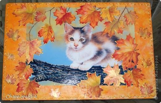 """Доска разделочная """"кошка"""" фото 1"""