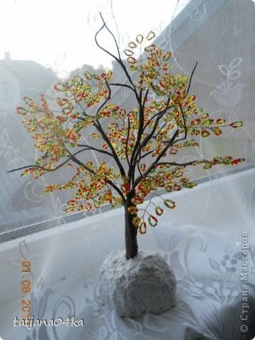 бисерные деревца фото 10