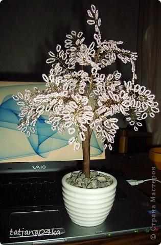 бисерные деревца фото 7