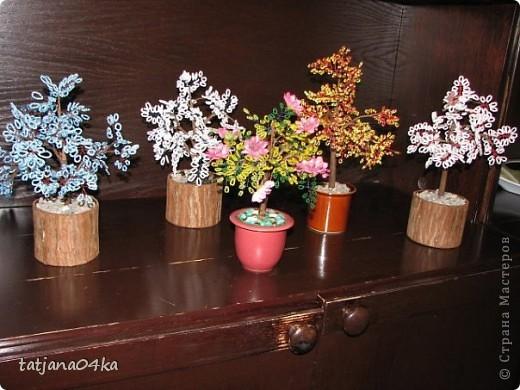бисерные деревца фото 15