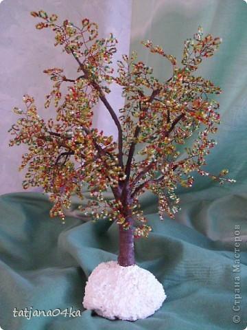 бисерные деревца фото 6
