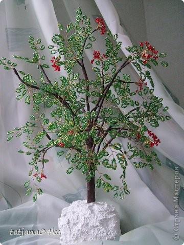 бисерные деревца фото 13