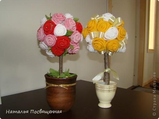 Мои розовые деревья фото 4