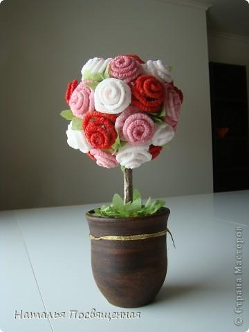 Мои розовые деревья фото 2