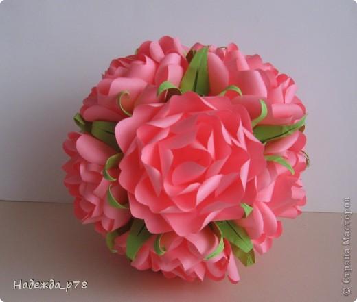 Розы фото 4