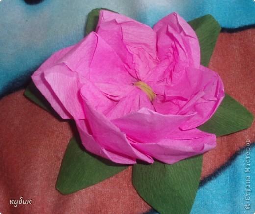 вот такие цветочки научила меня делать наша сотрудница, за что ей огромное огромное спасибо!!!!!!!!!!!!!! фото 7