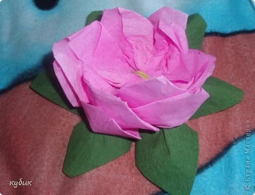 вот такие цветочки научила меня делать наша сотрудница, за что ей огромное огромное спасибо!!!!!!!!!!!!!! фото 8