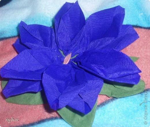 вот такие цветочки научила меня делать наша сотрудница, за что ей огромное огромное спасибо!!!!!!!!!!!!!! фото 14