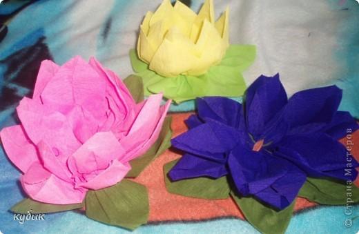 вот такие цветочки научила меня делать наша сотрудница, за что ей огромное огромное спасибо!!!!!!!!!!!!!! фото 1