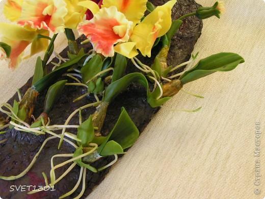 Слепила ещё одну орхидею и решила оформить её вместе с бордовой на кусок дерева и повесить на стену . фото 2