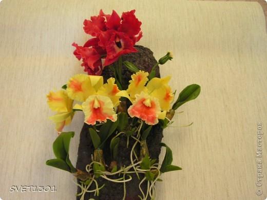 Слепила ещё одну орхидею и решила оформить её вместе с бордовой на кусок дерева и повесить на стену . фото 8