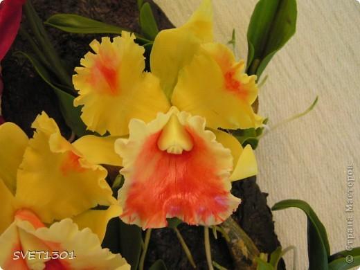 Слепила ещё одну орхидею и решила оформить её вместе с бордовой на кусок дерева и повесить на стену . фото 7