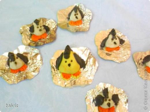 Пингвинчики на льдине. фото 1