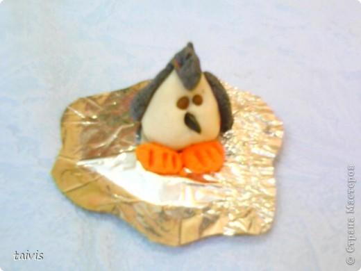Пингвинчики на льдине. фото 5