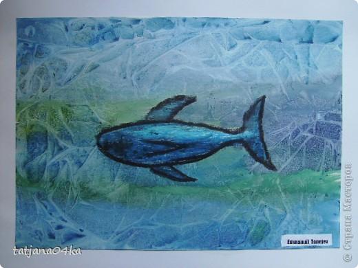 изображение воды и подводного мира фото 5