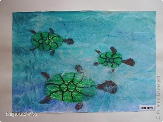 изображение воды и подводного мира фото 6