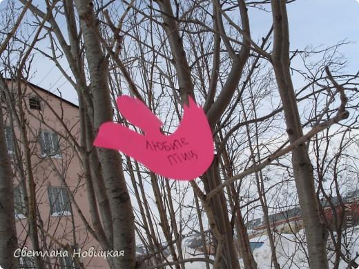 """1 апреля у нас завершился проект """"Птицы наши друзья"""".  фото 1"""