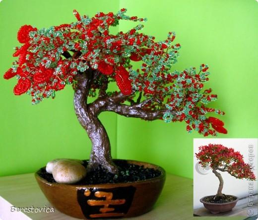 Захотелось сделать дерево по фото, причем искала именно сочетание красного и зеленого. Как оказалось, это не так просто, результат нельзя назвать копией живого дерева, но ... в чем-то бисерное даже лучше)))  Кстати, даже не знаю, как оно называется...   фото 1