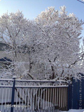 К нам в апреле наконец то пришла весна.А вот что было 10 дней назад... фото 8