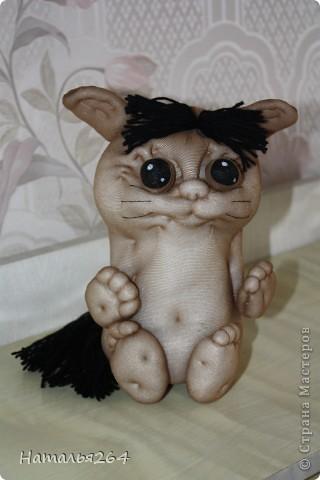 Мой Хома-кот фото 1