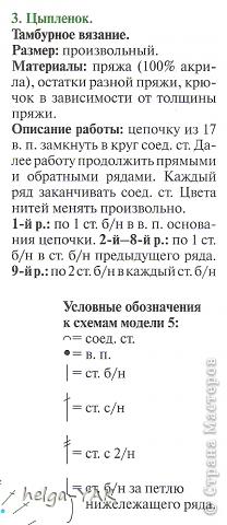 "Мой "" птичий"" двор. фото 24"