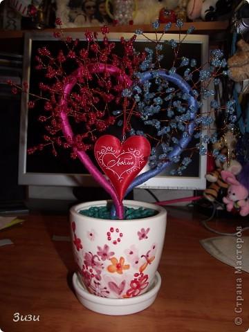 Моё дерево фото 1