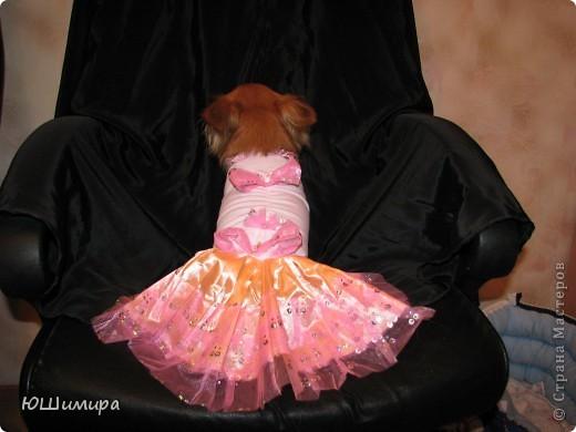 Платье для юной леди. фото 4