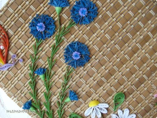 Квиллинг панно полевые цветы бумага