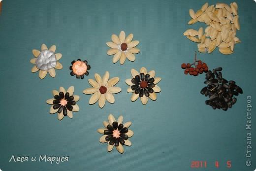 Цветы и подсолнух из тыквенных семечек фото 2