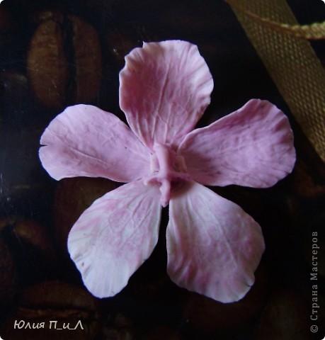 Вот такой чудо-остров у меня получился…Делала сотруднице на день рождения букетик, изначально не зная результата. Слепила что-то типа орхидей…А уж когда начала раздумывать как его оформить - все это и получилось. фото 10