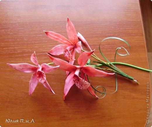 Вот такой чудо-остров у меня получился…Делала сотруднице на день рождения букетик, изначально не зная результата. Слепила что-то типа орхидей…А уж когда начала раздумывать как его оформить - все это и получилось. фото 7