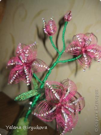 Розовая лиллия фото 1