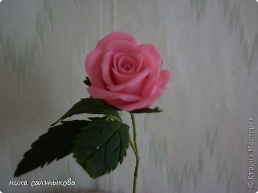 """Наконец то и я смогла вылепить свою первую розу да еще с листвой. Ну не получалась у меня прилчной розы, хотя смотрела все ваши ссылки, МК. Можно сказать я ее """"родила"""";))). И листву боялась даже приступать. С пасибо вам мастерицы, что щедро делитесь своими опытами и МК!!! фото 1"""